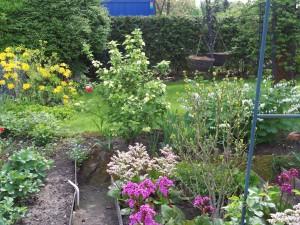 Garten Mai 5 002