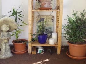 Balkonbepflanzung und Decoupage 014