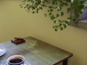 Decoupage, Balkonpflanzen 044